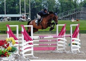 horse and rider going over a jump