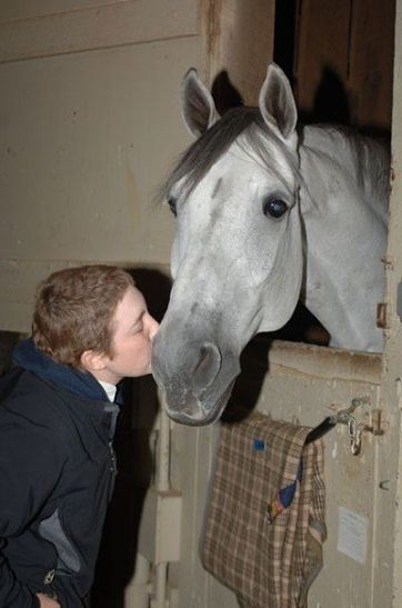 person kissing a horse on the nose