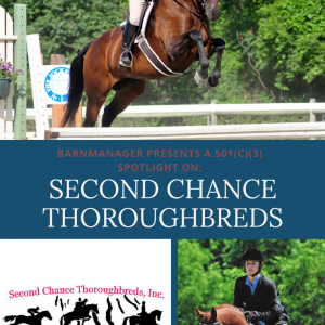 Second Chance Thoroughbred - user of BarnManager for barn management software and equine management software