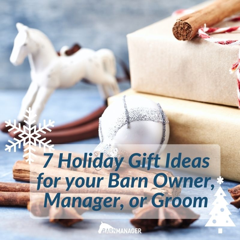 7 Gift Ideas For Your Barn Owner Manager Or Groom Barnmanager