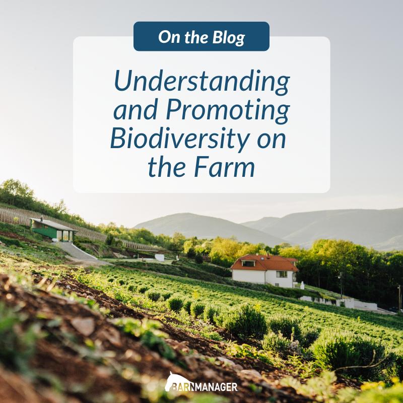 Biodiversity Blog
